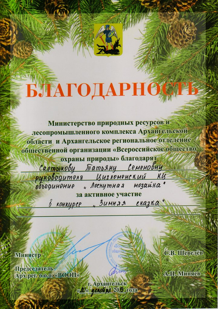 Благодарность Салтыковой Т.С. за участи в конкурсе