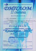Диплом II степени  победителя открытой городской выставки-конкурса Коллекция - 2013