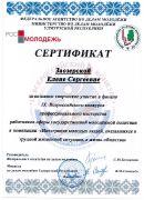 Сертификат Заозерской Е.С. IX Всероссийский конкурс профессионального мастерства