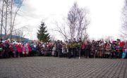 Культурный центр Цигломень Торжественный митинг к 69 годовщине Победы в Великой Отечественной войне 22