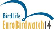 Международные дни наблюдений за птицами